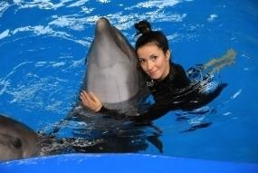 Одне коло з дельфінами у воді + фото у подарунок (10/15)